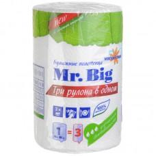 """Полотенца бумажные """"Мягкий знак"""" Mr. Big"""" 2х- слойные, 1 шт/ упак, 24 упак/кор"""
