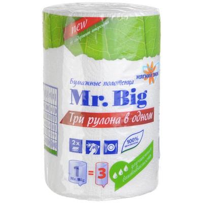 "Полотенца бумажные ""Мягкий знак"" Mr. Big"" 2х- слойные"